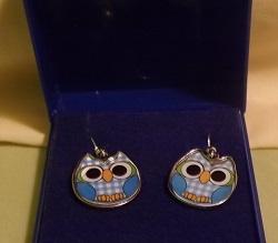 Blue enamel owl earrings. fish hook style for pierced ears. White metal