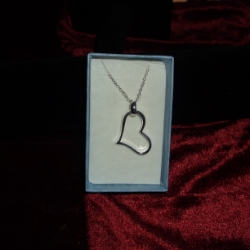 Ring and heart pendant on a 17inch chain. 925 silver.