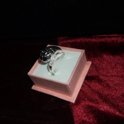 Adjustable snake ring with black crystal eyes and clear crystals on the tail. 925 silver.