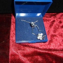Butterfly on heart and silver ring on a 20inch chain. 925 silver.